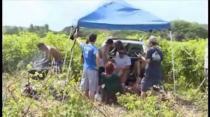 Sol Rally Barbados Promo 2014