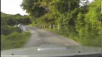 Rally Barbados 2013 Stage Preview Spring Vale